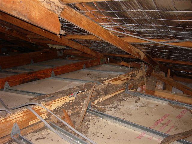 Termites Damage
